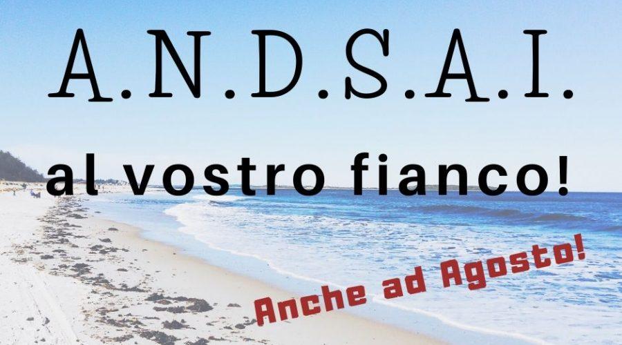 A.N.D.S.A.I. al vostro fianco!